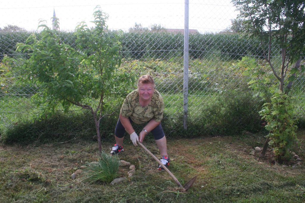 Počitniško delo na šolskem vrtu