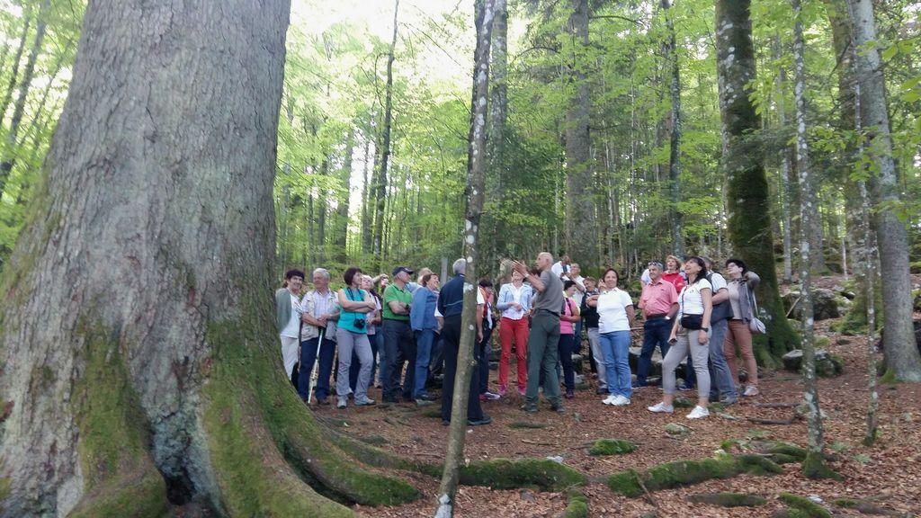 Ekskurzija članov Turističnega društva Bled