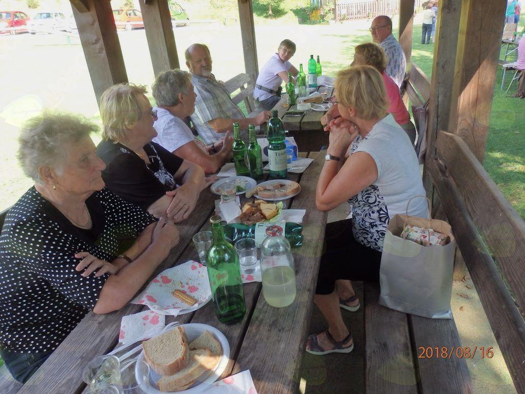 Člani Društva upokojencev Oplotnica na pikniku na Brezju