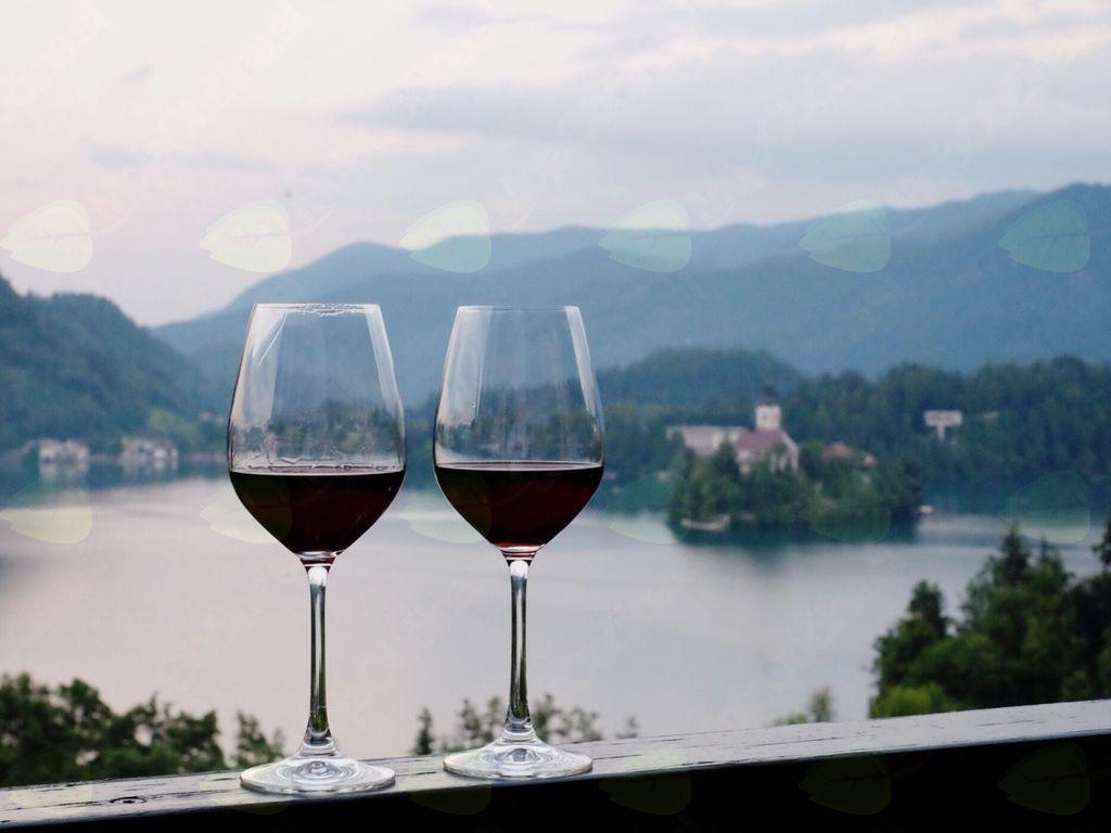 Prvi Blejski vinski festival