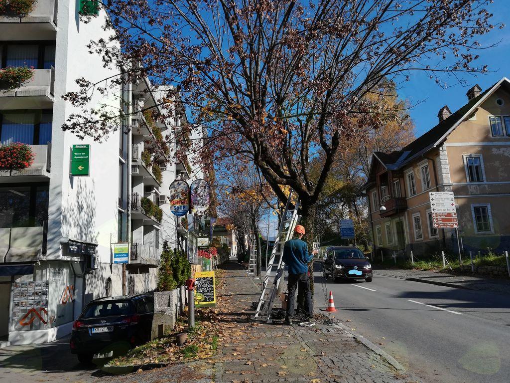 Včeraj so začeli z montažo lučk na Ljubljanski.
