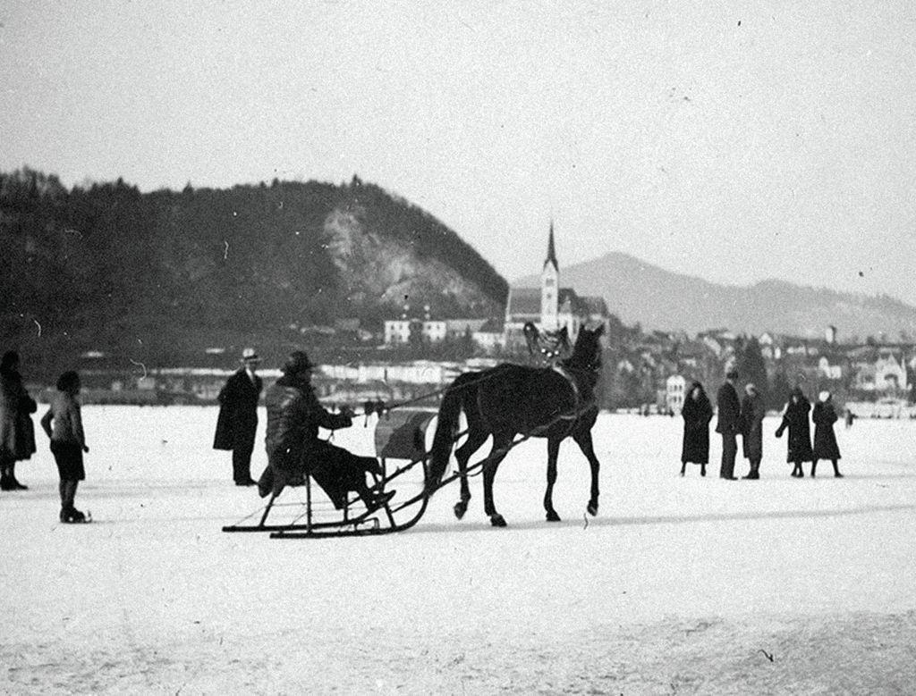 Konjska vprega, foto arhiv CUT Bled