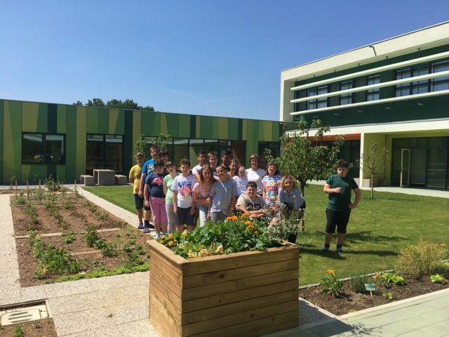 Nov šolski vrt