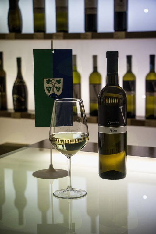 Protokolarno vino Občine Vipava je pinela