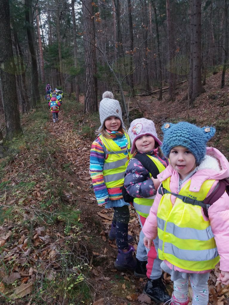 Mladi planinci Vrtca Vransko na pohodu