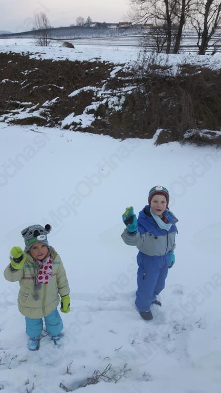 Zamrznjena reka Temenica