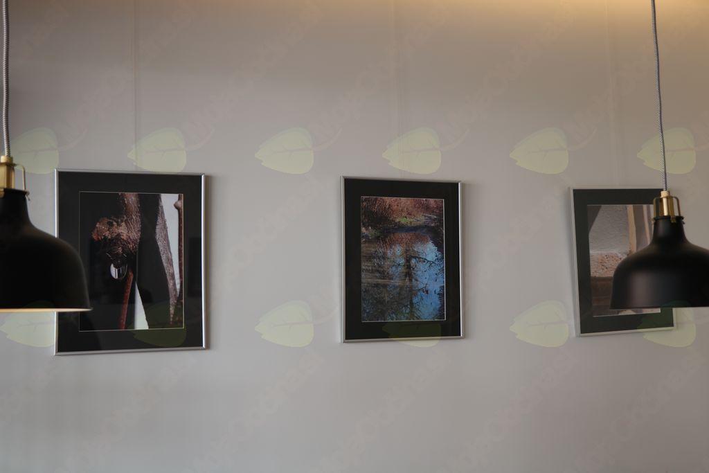 Irena in Binca razstavljata v Mestni kavarni
