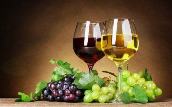 Blagoslov vina in 2. obletnica rastoče knjige Primskovo