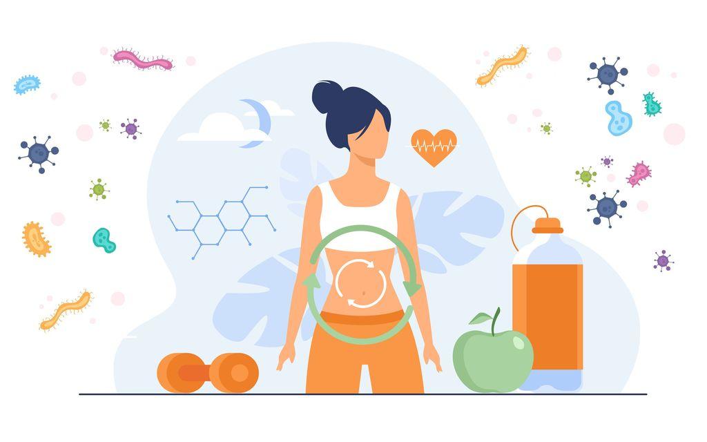 Povezava med črevesjem in imunskim sistemom