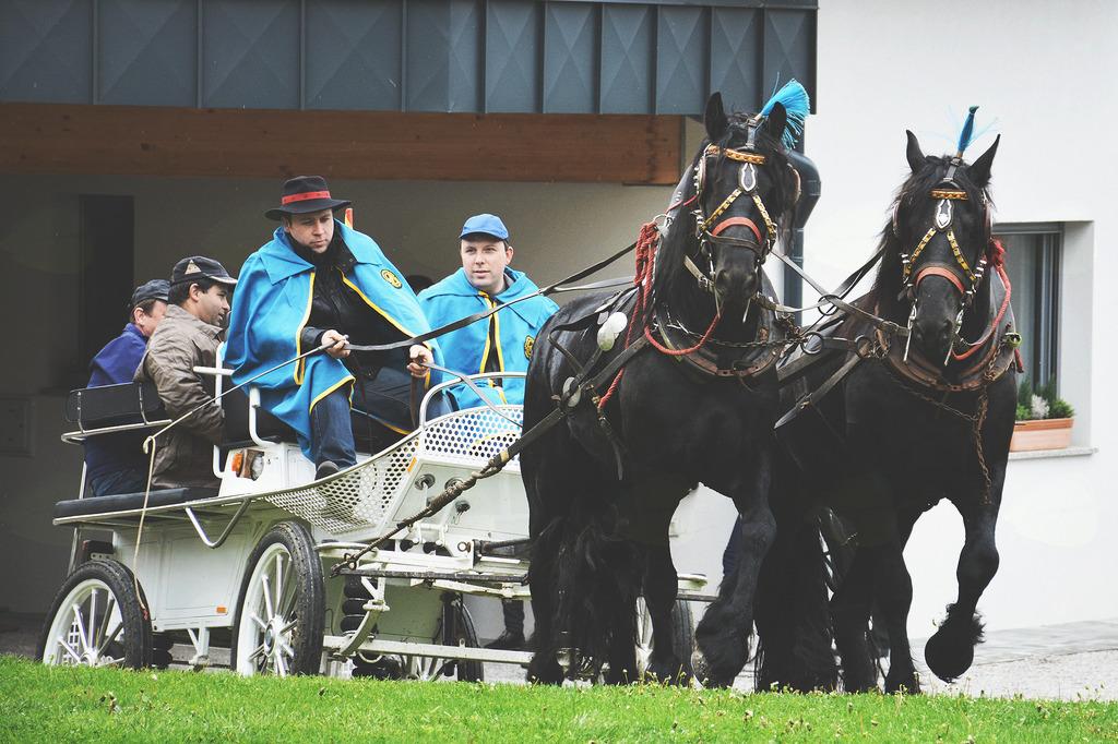 Blagoslov konj v Šentjuriju