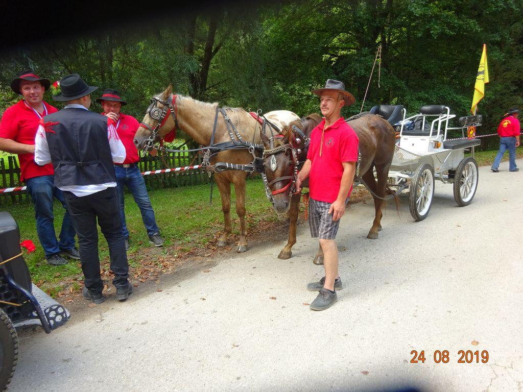 100 Kočij v Šentjernej