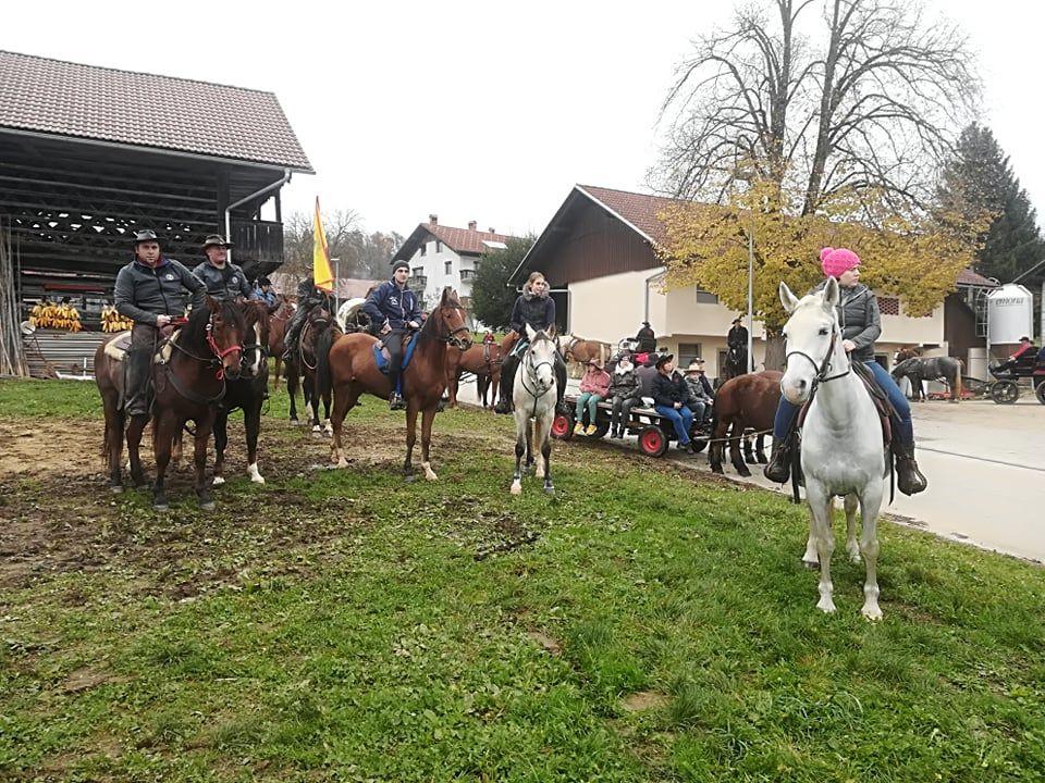 Blagoslov konj na Martinovo nedeljo
