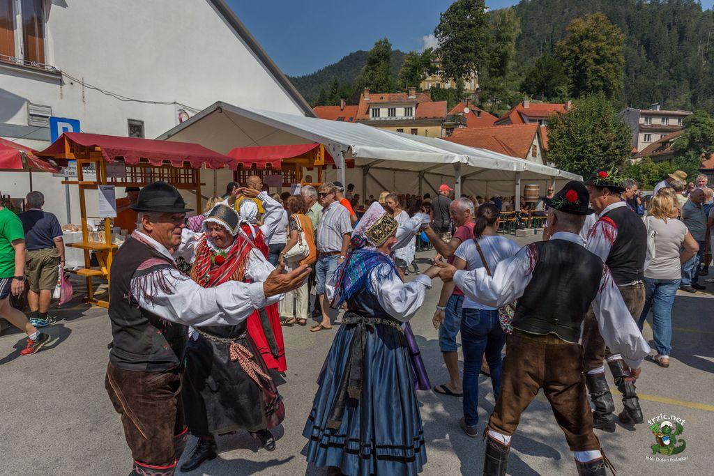 9. Festival tržiških bržol