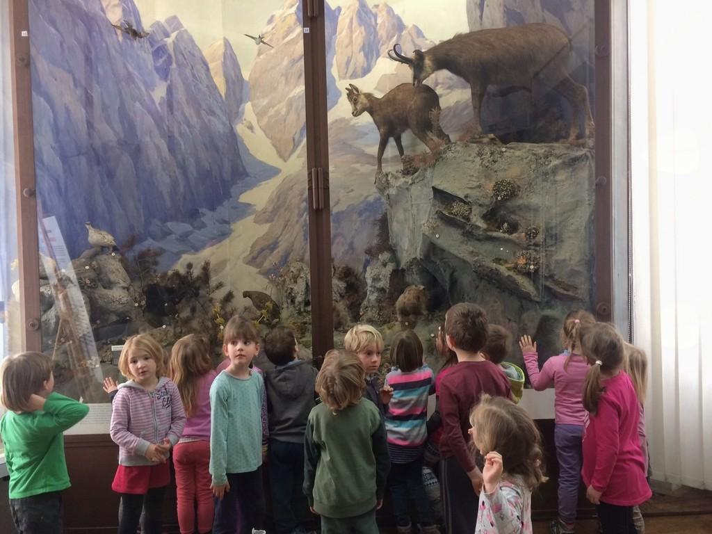 Obisk muzeja v Ljubljani