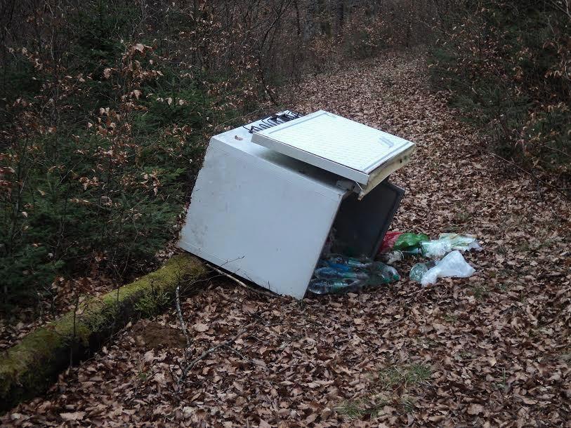 Na gozdnih poteh se najde tudi odslužena zamrzovalna skrinja. (Foto: Roman Lukšič)