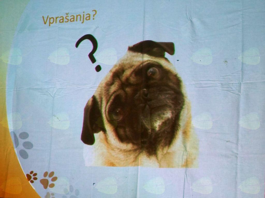 Poučno predavanje o psih
