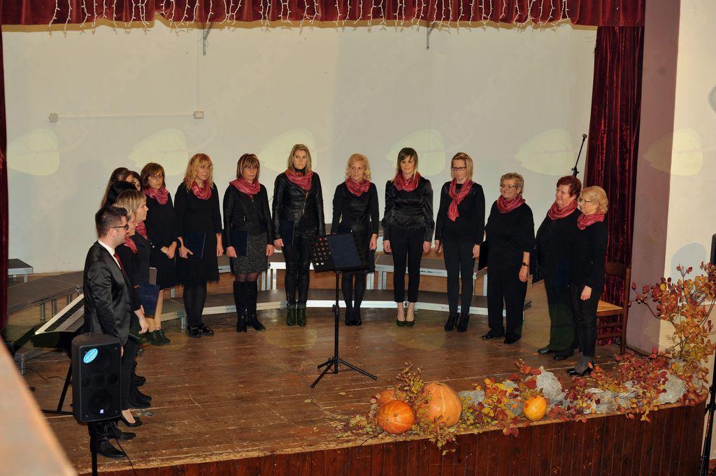 Ženski pevski zbor Zarja iz Sel na Krasu