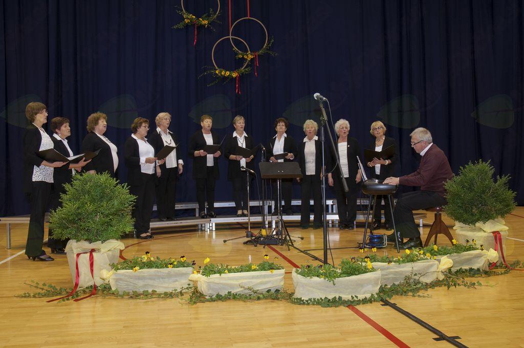 Pevski zbor Društva žena Miren - Orehovlje