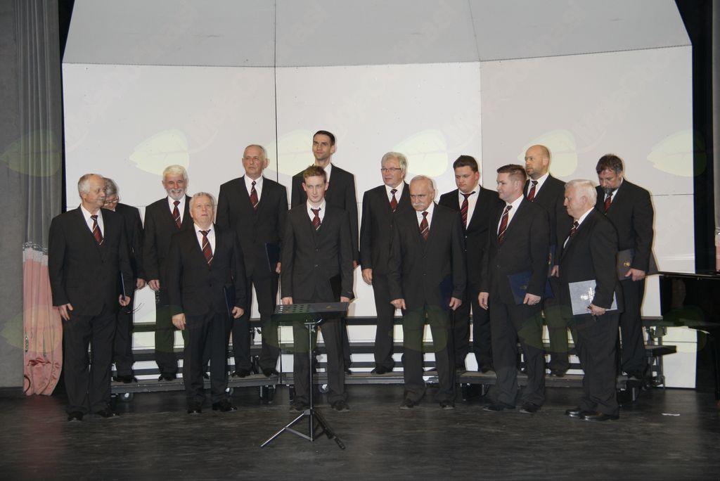Območna revija odraslih pevskih zborov in malih pevskih skupin