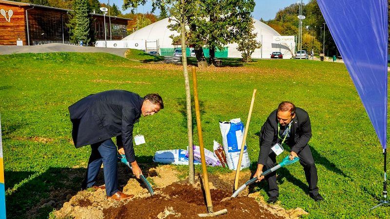 Zasadili deset novih dreves v Parku Julija