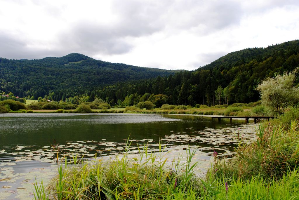 Jezero pri Podpeči