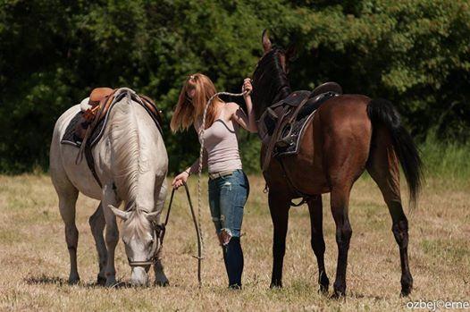 Srečanje s Kraškimi konjeniki 2017