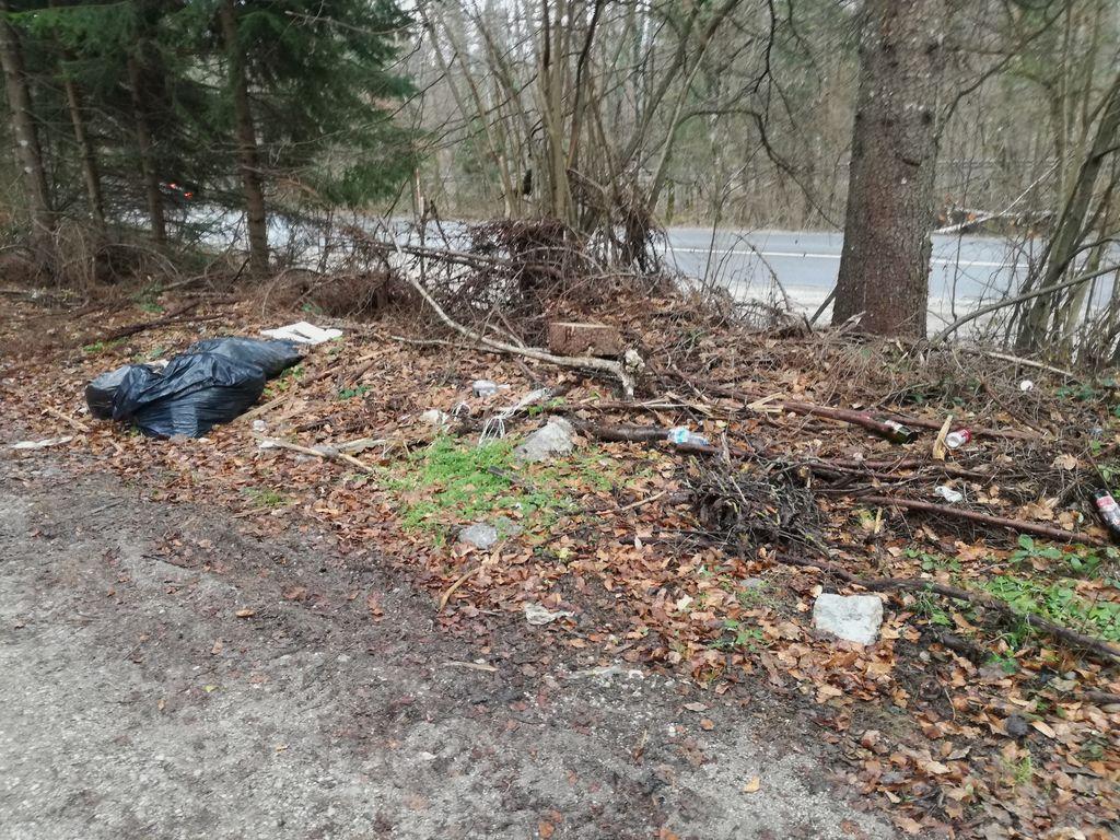 Smetenje ob javnih cestah in neodgovorno odlaganje odpadkov v naravno okolje