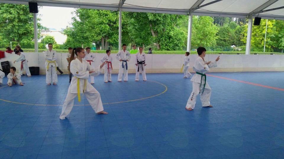Predstavitev taekwon-doja v Športnem parku Radovljica