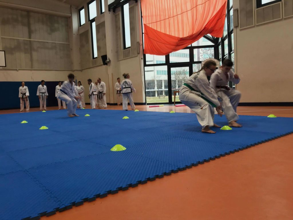 Taekwon-doisti na trening v Bologno