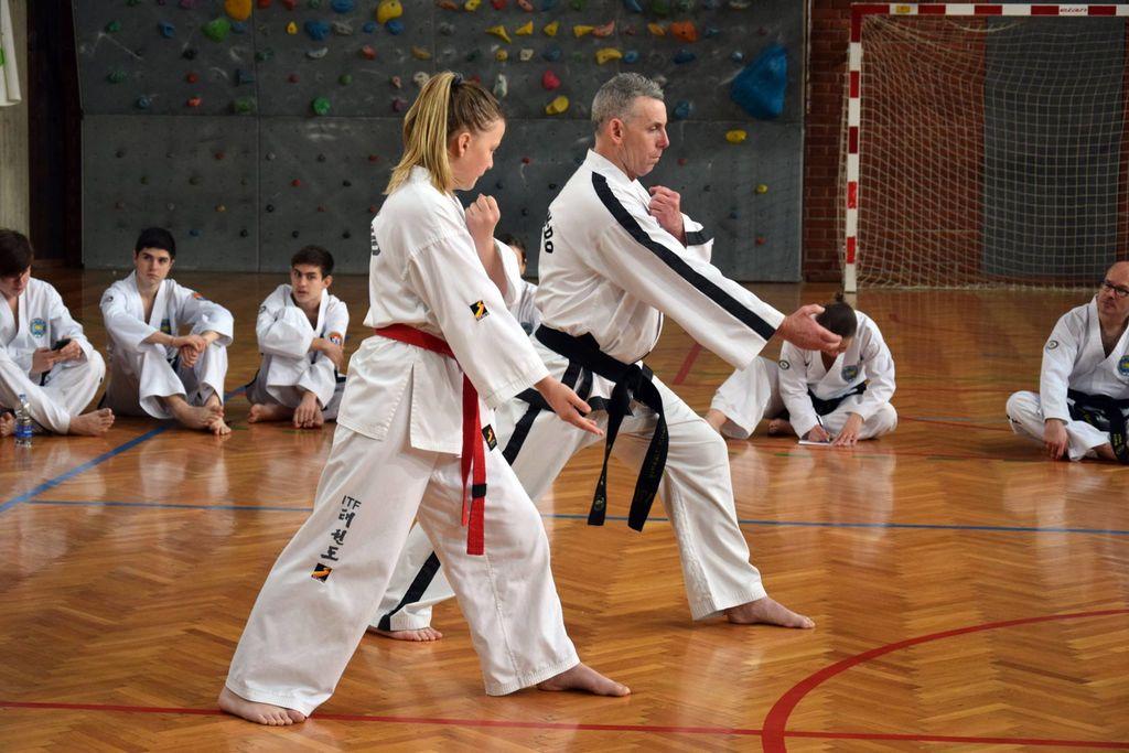 Uspešen mednarodni Taekwon-do seminar v Radovljici