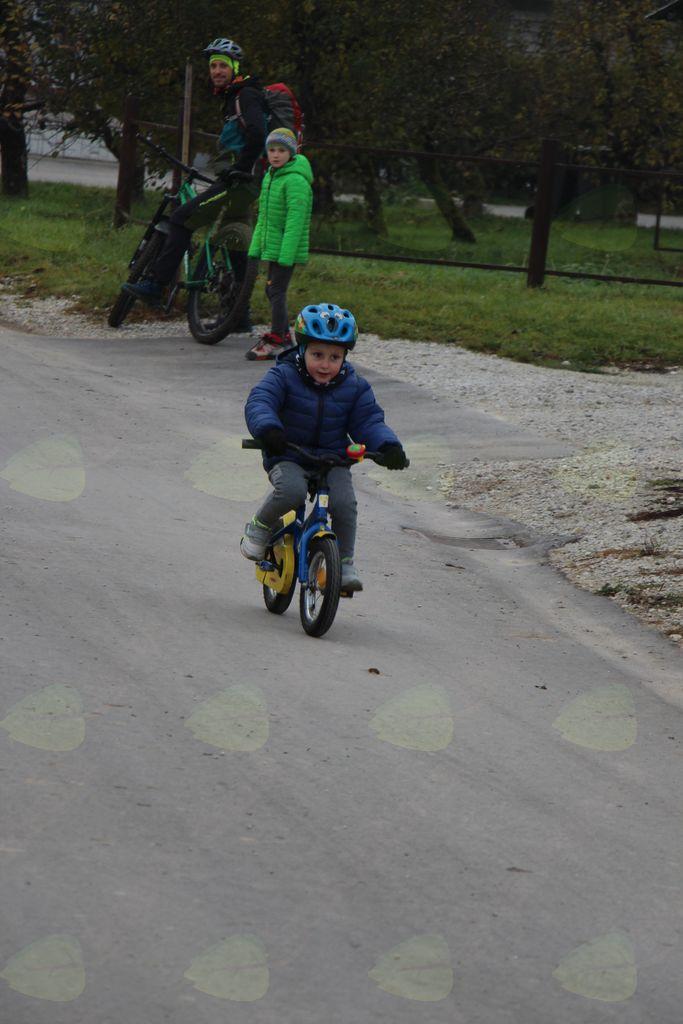lansko leto na poganjavčku, leto s kolesom