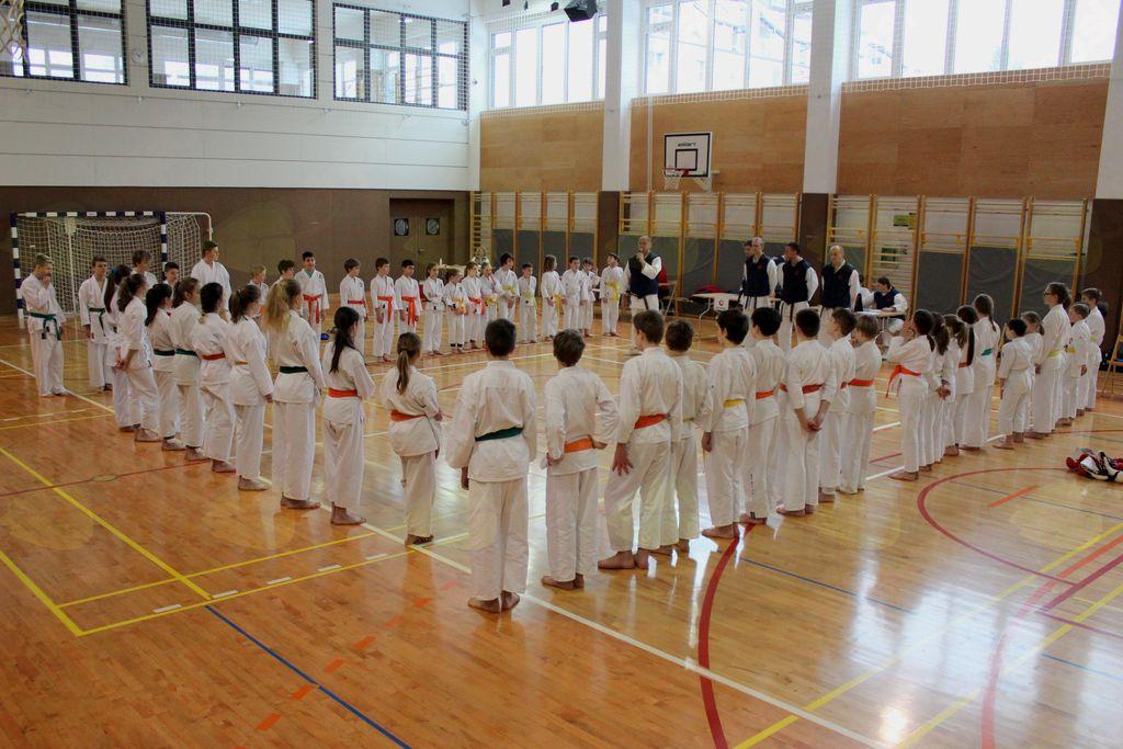 Štiri zmage na regijskem tekmovanju Sankukai karateja v Kamniku