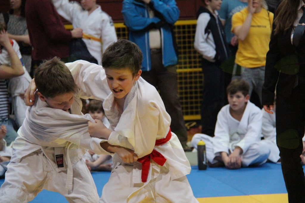 Judoisti bronasti v Žireh