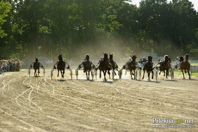 19. občinski praznik - Kasaška dirka za pokal Občine Križevci