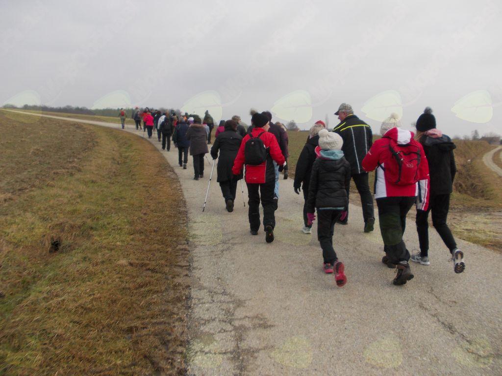Prešernov pohod po obronkih vasi Gornji Petrovci