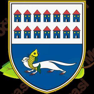 Imenovanje nadomestnega člana Občinske volilne komisije občine Gornji Petrovci