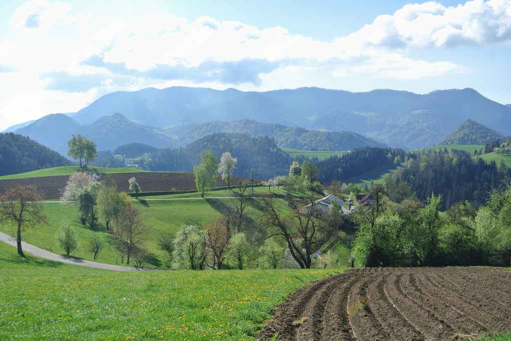 10. Velikonočni pohod: Mislinja - Črepič - Fričev vrh - Završe - Mislinja