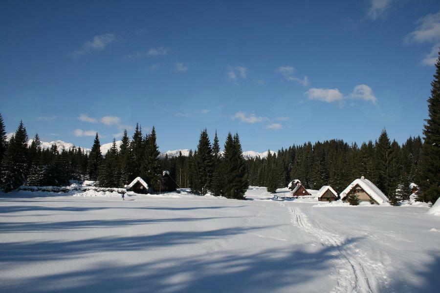 Planinski izlet na Uskovnico, Javorov vrh in Pokljuko