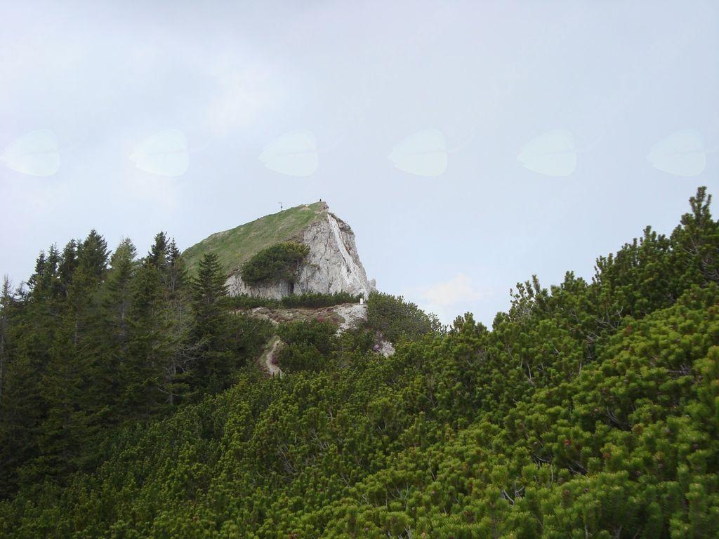 Planinski izlet na Trupejevo poldne