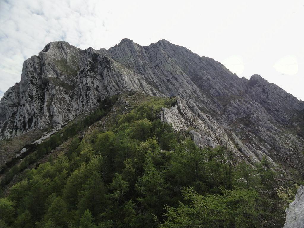 Planinski izlet - Amariana