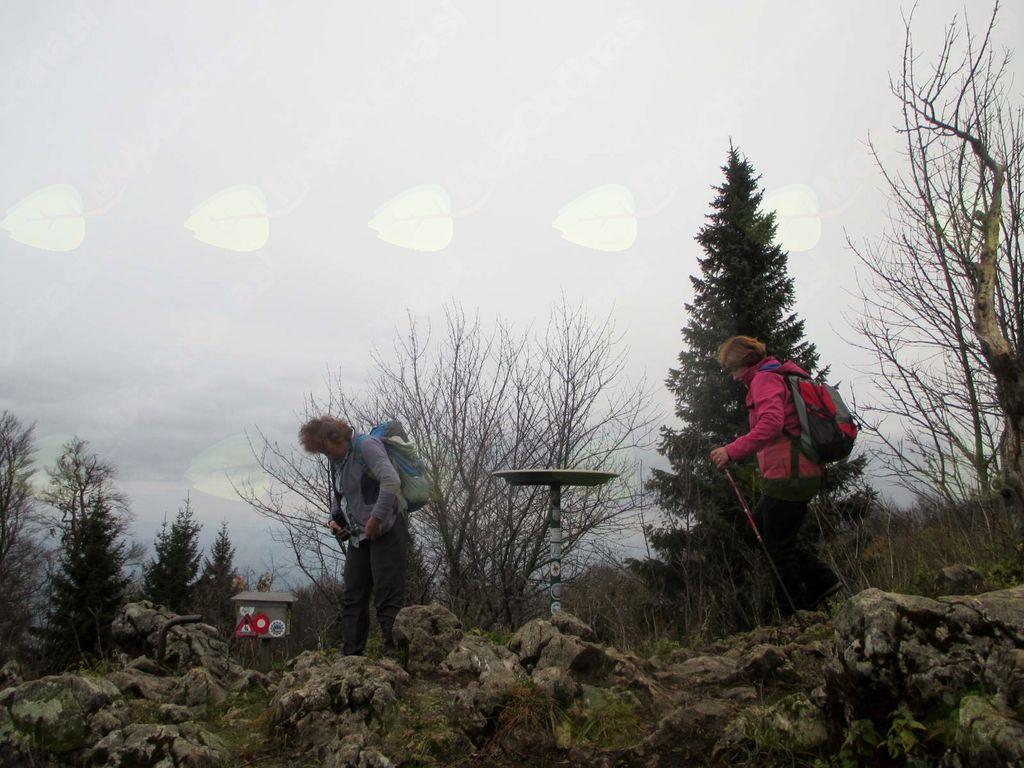 FOTOREPORTAŽA: PD Podpeč Preserje na Trdinovem vrhu 12.11.2017