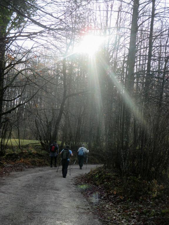 FOTOREPORTAŽA: Izlet PD Podpeč Preserje na Mirno goro  20. 11. 2016