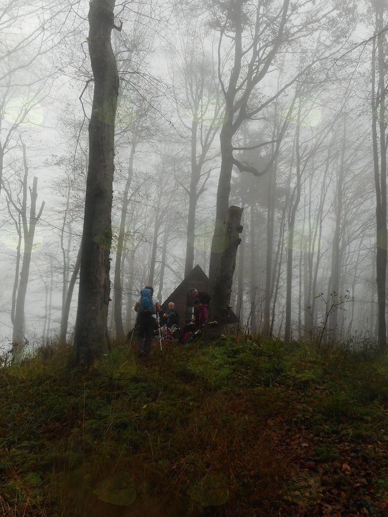 FOTOREPORTAŽA : PD od Kala do Šmohorja  4. 11. 2018