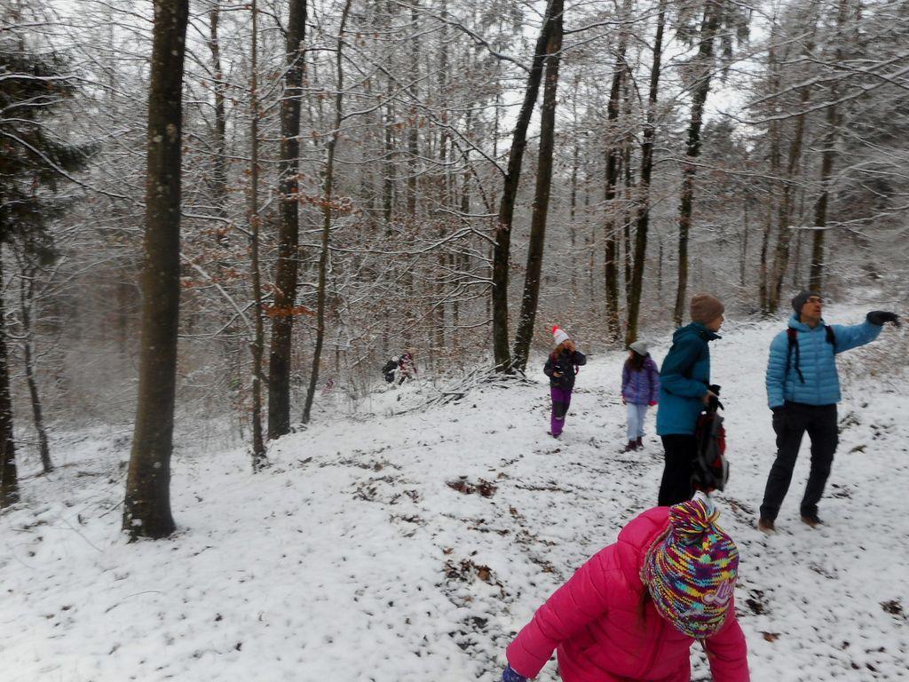 FOTOREPORTAŽA: Mladi planinci PD Podpeč - Preserje na poti od Gradišča do Obolna 15. 12. 2018