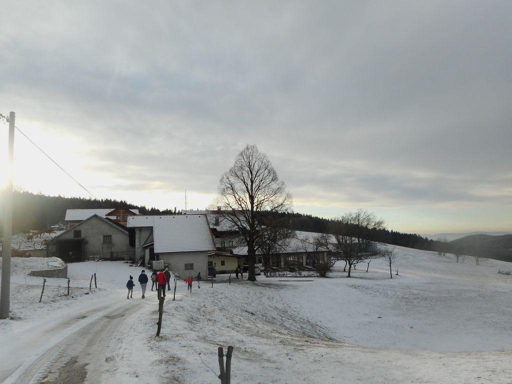 Fotoreportaža: Mladi planinci PD Podpeč - Preserje na Nanosu 12. 1. 2019