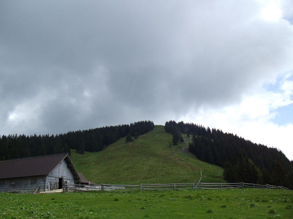 Planinski pohod na Planino Konšco in Javornik-Ženiklovec