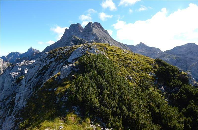 Planinski izlet na Goličico