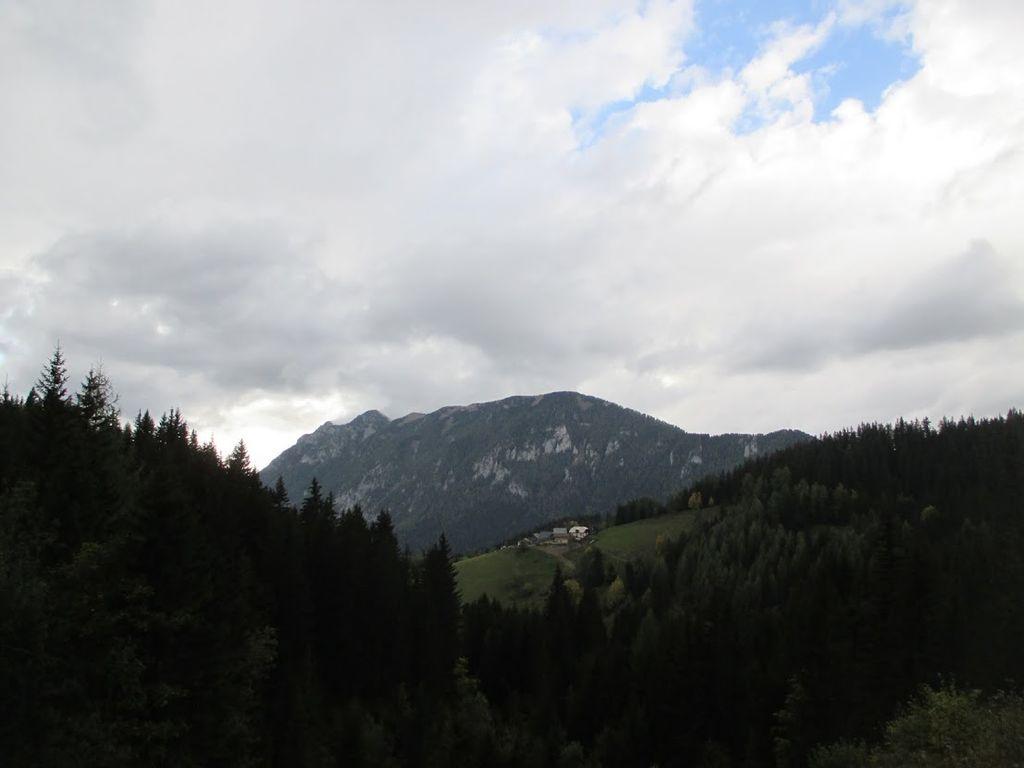 Planinski izlet na Olševo