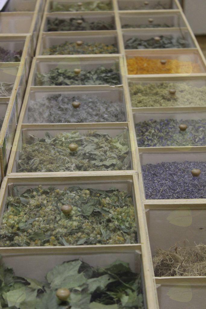 Nabiranje, sušenje in skladiščenje zelišč