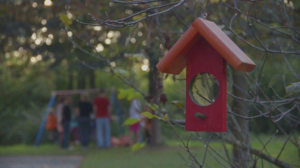 Projekcija filma Dom ljubi dom (TVU)